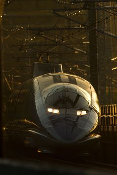 Japanese bullet train, Shinkansen 新幹線 In this perspective it looks like a snake. Locomotive, Japan Tourism, Japan Train, Rail Train, Tramway, High Speed Rail, Rail Transport, Speed Training, Rolling Stock