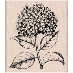 Purchase the Hero Arts® Rubber Stamp, Hydrangea at Michaels.com. Customize invites, thank you notes, cards and more using this Hero Arts® Rubber Stamp.