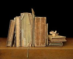 AAD HOFMAN Books (2011)  Delightful subject & simple but intense!