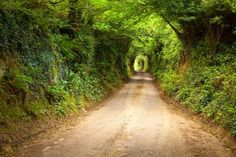 The ancient roads were naturally tunneled into the soft ground by countless footsteps.