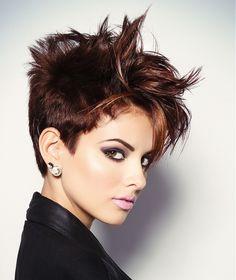 Douglas Carroll Salon Short Brown Hairstyles