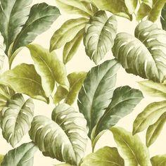 Tapeta ścienna w liście Botanical BA2401 Grandeco