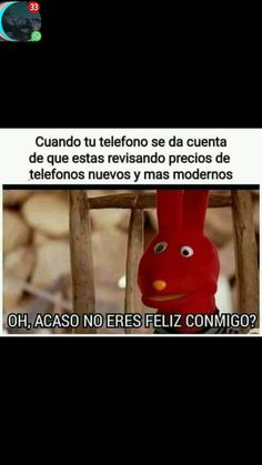 Memes Estúpidos, New Memes, Love Memes, Funny Memes, Marvel Memes, Big Bang Theory, Laughter, Anime, Funny Quotes
