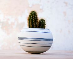 ceramic mini planter for cactus succulent or air plant. by wapa