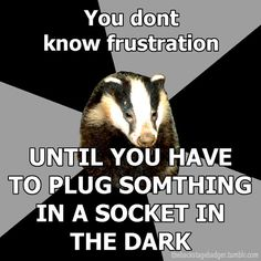 You don't! | Submitted by demons-i-get  Official Backstage Badger Shirt Information Here!