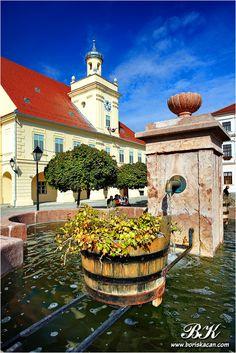 Osijek is fourth largest city in Croatia,located on Drava river in Slavonija Region. Population of the city is around 114000 people.Osijek has most parks. European Tour, European Travel, Croatia Tourism, La Rive, Dubrovnik Croatia, Central Europe, Bosnia, Eastern Europe, Beautiful Places