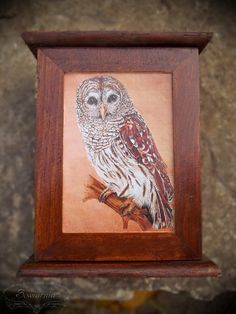 Key box with vintage owl Key Box, Vintage Owl, Wood Home Decor, House In The Woods, Decoupage, Lion Sculpture, Statue, Birds, Animals