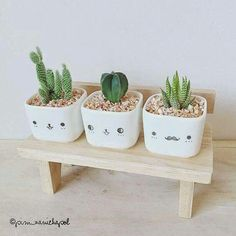 Pots with personalities!