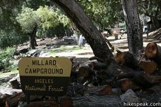 Millard Campground: photos an information on this 5 site campground at the mouth of Millard Canyon in the San Gabriel Mountains