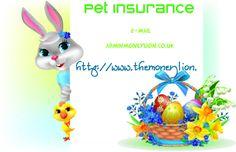 http://www.themoneylion.co.uk/insurancequotes/lifestyle/privatehealthinsuranceuk Health Insurance