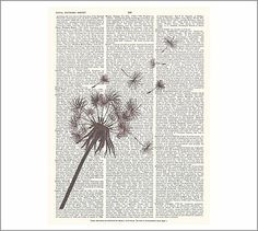 i like the idea of layering the pic over the txt. maybe could pint onto old book pages?