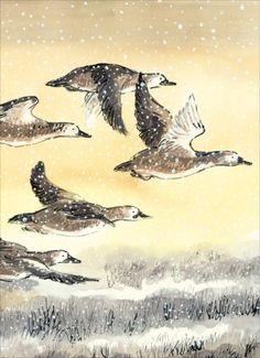Illustration François Place