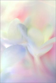 soft muted colors iPhone wallpaper background