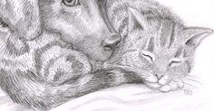 Custom Pet Portrait  Pencil drawing of your by TheKestrelAndTheSea