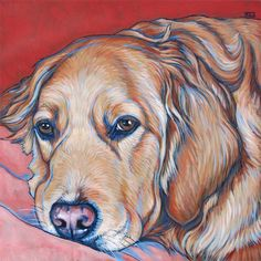 Gallery by Breed - Pet Portraits by Bethany