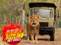 Big Cats at Casela, Mauritius for the Shopping Fiesta 2012 at Crazy prices
