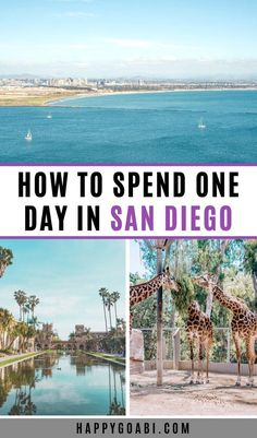 Visiting San Diego and only have one day to explore? There are so many cool things to see and do, but this one day in San Diego itinerary will help you see some of the best of San Diego during your short time in this amazing city! California Travel Guide, Usa Travel Guide, Travel Usa, Travel Tips, Travel Advice, Travel Essentials, Southern California, Travel Guides, One Day Trip