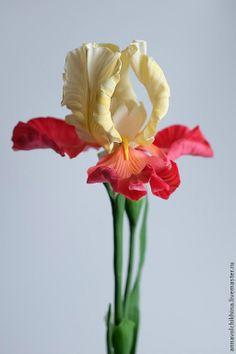 2d221360271-tsvety-floristika-irisy-tsvety-iz-holodnogo.jpg (512×768)
