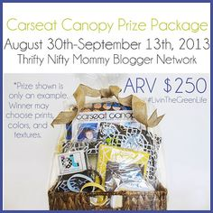 Housewife on a Mission: Carseat Canopy Prize Package #LivinTheGreenLife