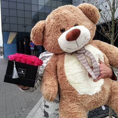Huge Teddy Bears, Large Teddy Bear, Costco Bear, Teddy Bear Pictures, Kawaii Plush, Cuddles, Stuffed Animals, Girls Bedroom, Kiss