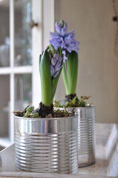Smillas Wohngefühl: [DIY]: Frühlings-Bilder in zarten Aquarelltönen und GRÜN im ganzen Wohnbereich