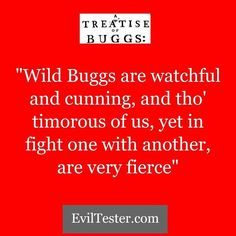 """No-one said Software Development and Testing was going to be easy.  http://ift.tt/2hEDu2I """"Wild Buggs are watchful and cunning and tho' timorous of us yet in fight one with another are very fierce"""""""