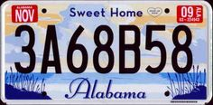 License Plates for each state