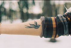 "i want this swallow in rainbow on my upper arm that says ""flying proud & free"" in a ribbon underneath it <3"