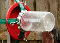 Homemade Squirrel Feeder - recycle old Christmas tree holder!