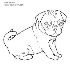 Pug Puppy Coloring Page Craft Ideas Pinterest Pug puppies
