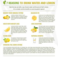The health benefits of drinking lemon water, and drinking warm lemon water. These little superfruits can really change your life, just by drinking a glass of lemon water once or more a day! Healthy Recipes, Healthy Drinks, Healthy Tips, Healthy Food, Raw Food, Herbal Remedies, Natural Remedies, Lemon Water Benefits, Drinking Lemon Water