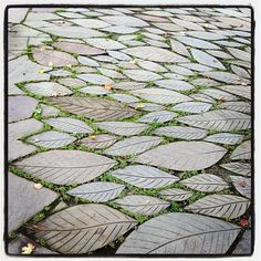garten pflaster Leaf Paving Stones (Photo by Jennifer Learmonthplease keep the photo credit, even if you repost) Stone Walkway, Paving Stones, Landscape Elements, Landscape Design, Pavement Design, Paving Pattern, Paving Design, Garden Architecture, Concrete Patio