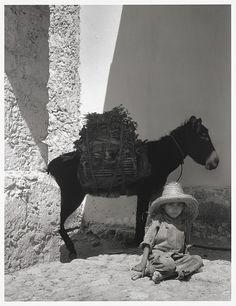 Boy and donkey, 1933, by Paul Strand