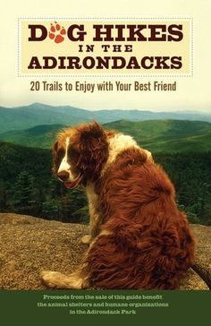 Dog Hikes in the Adirondacks. 20 trails to enjoy with your best friend. *Amelia