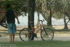 Pranking bike thief   Gif Finder – Find and Share funny animated gifs