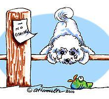 dog bichon frise drawing - Cerca con Google