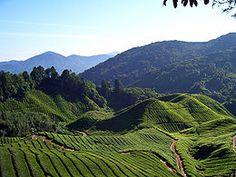 Gjennom Malaysia