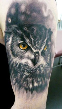 b/w owl with yellow eyes - Adam Kremer