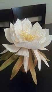şekerden  gecenin kraliçesi çiçeği Plants, Plant, Planets