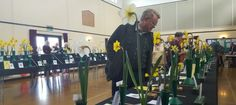 The Daffodil Society Mid Southern Group Spring Show 2016.