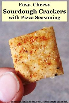 Pizza Flavored Whole Wheat Sourdough Crackers @ Common Sense Homesteading - not GAPS friendly. Sourdough Recipes, Sourdough Bread, Bread Recipes, Chicken Recipes, Real Food Recipes, Snack Recipes, Oats Recipes, Savory Snacks, Burger Recipes