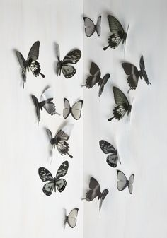 Flutter Free Wall Decor in Black. Bring the sprightly spirit of the outdoors into your abode with these dreamy butterfly ornaments! #black #modcloth