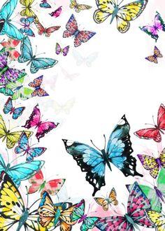 Victoria Nelson - butterfly collage denser .jpg