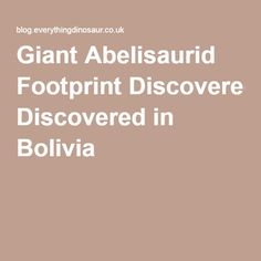 Giant Abelisaurid Footprint Discovered in Bolivia