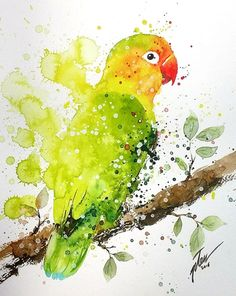 """Commission piece of lovely pet bird """"Taco"""" by Tilen Ti Love Birds Drawing, Love Birds Painting, Bird Drawings, Animal Drawings, Watercolor Paintings Of Animals, Watercolor Bird, Animal Paintings, Watercolor Drawing, Tableau Pop Art"""