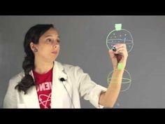 Volatile vs. Non-Volatile in Chemistry : Chemistry Lessons - YouTube