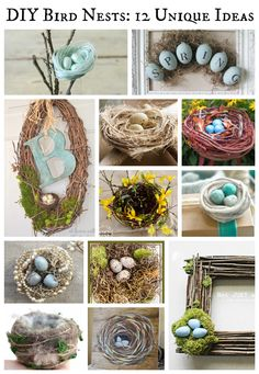 DIY bird nests are perfect for your Spring decor. Here's 12 unique ideas to make, using everything from pearls to twine, from moss to thread and more!