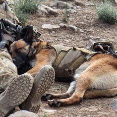#MilitaryPhotography ....... Best Friends Forever via Mark Donaldson VC