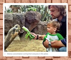 The most serious zoo visit ever with the Padalecki boys