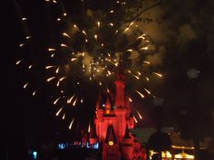 Show no Magic Kingdom!!!